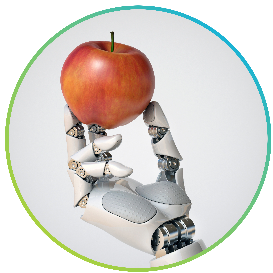 robo apple