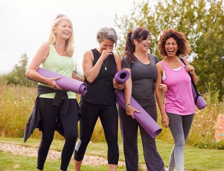 menopause journey